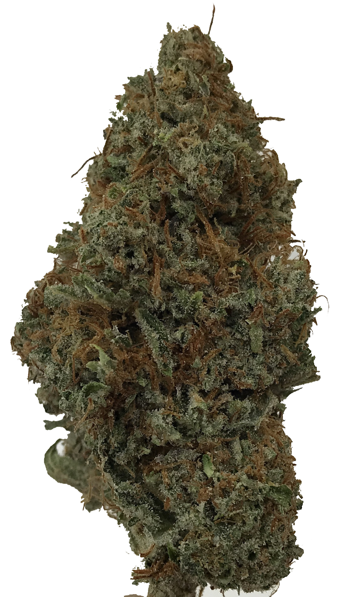 Cloud Smacker - Delivery Dispensary Bakersfield - MJ's Delivery